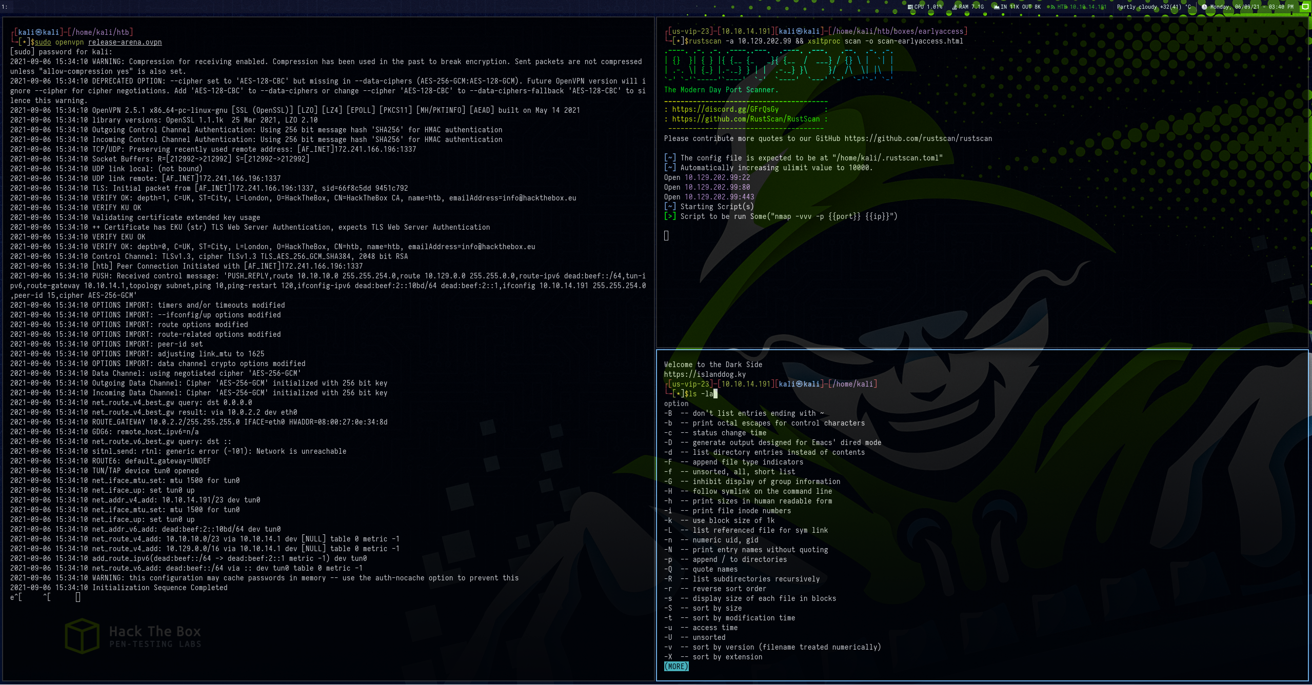 i3 and i3-gaps running on Kail with PwnBox UI